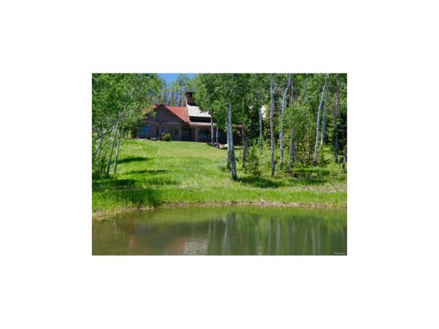 1930 County Road 14N, Kremmling, CO 80459 (#9493417) :: Wisdom Real Estate