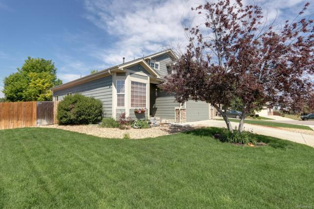 5445 Military Trail, Parker, CO 80134 (#9493978) :: Structure CO Group