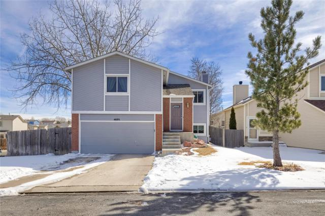 4695 Badlands Court, Colorado Springs, CO 80922 (MLS #9494230) :: 8z Real Estate