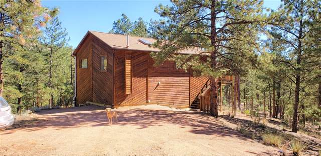 16456 Ouray Road, Pine, CO 80470 (#9494627) :: The DeGrood Team