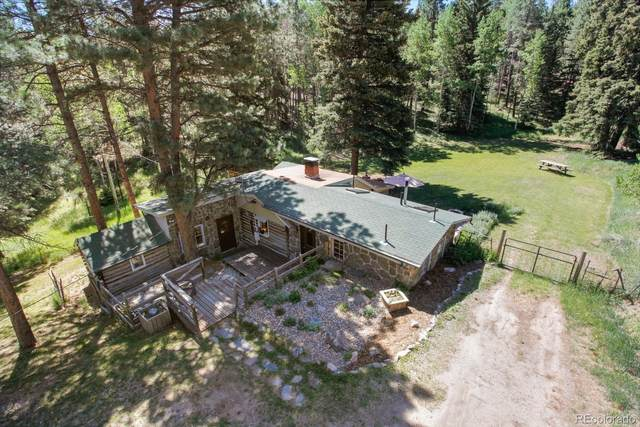 28386 Squirrel Lane, Conifer, CO 80433 (#9498996) :: The DeGrood Team