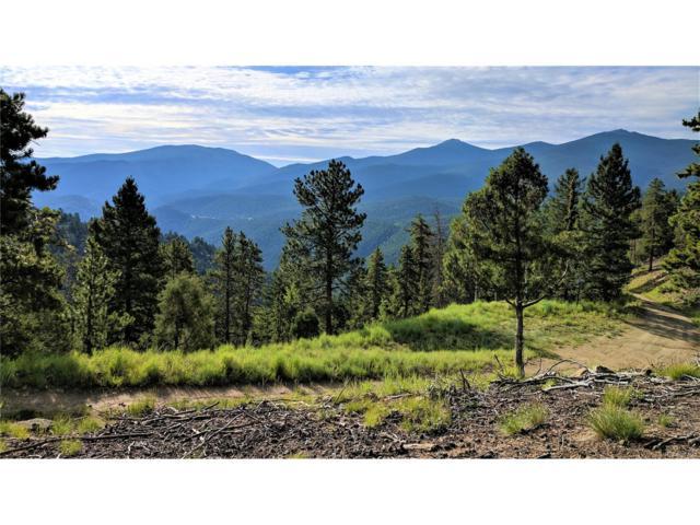 Goat Trail, Idaho Springs, CO 80452 (MLS #9503777) :: 8z Real Estate