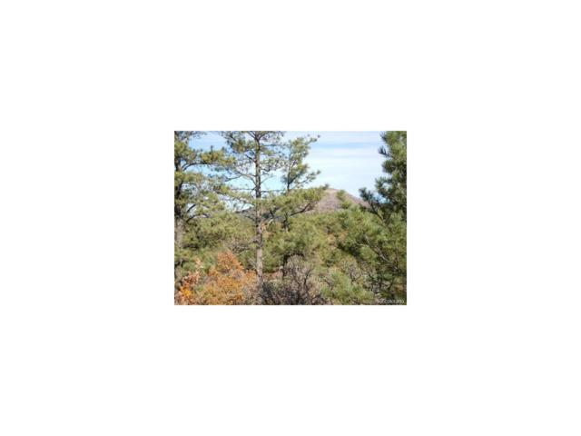 945 Cerro Place, Larkspur, CO 80118 (MLS #9510325) :: 8z Real Estate