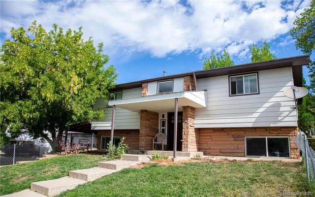 435 Cleveland Street, Meeker, CO 81641 (#9511819) :: Re/Max Structure