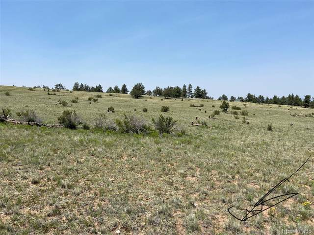Guipago Trail, Hartsel, CO 80449 (MLS #9512276) :: Bliss Realty Group