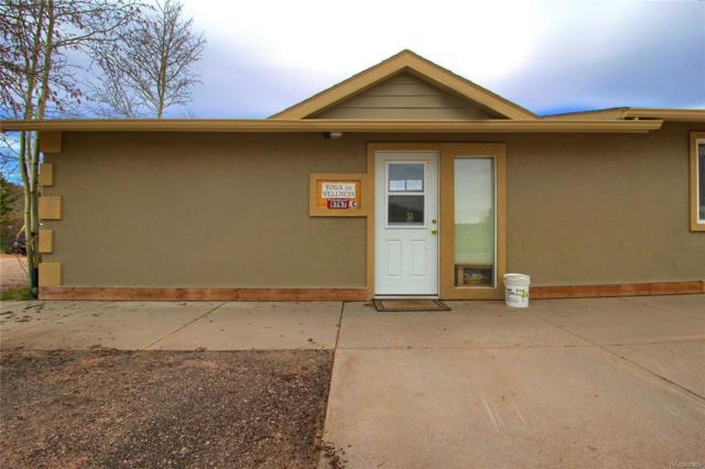 9767 Rhodus Street, Conifer, CO 80433 (#9513707) :: The Peak Properties Group