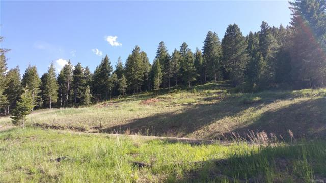 21646 Lucky Star Drive, Morrison, CO 80465 (#9516636) :: The DeGrood Team