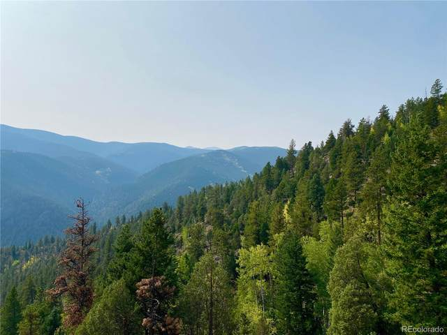 777 Alps Mountain Road, Idaho Springs, CO 80452 (#9516858) :: The Harling Team @ Homesmart Realty Group
