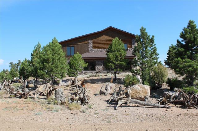 2860 Gulch Road, Guffey, CO 80820 (#9517697) :: Wisdom Real Estate
