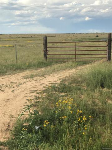 19310 Powers Road, Colorado Springs, CO 80928 (MLS #9518782) :: 8z Real Estate