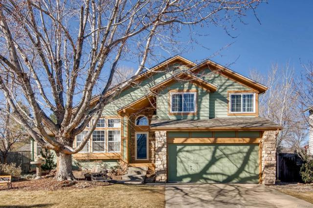 8423 Zinnia Court, Arvada, CO 80005 (#9521576) :: The Peak Properties Group