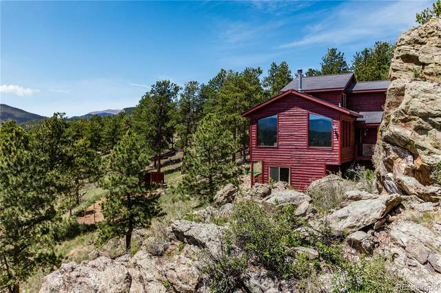 517 Overlook Drive, Bailey, CO 80421 (#9524260) :: Re/Max Structure