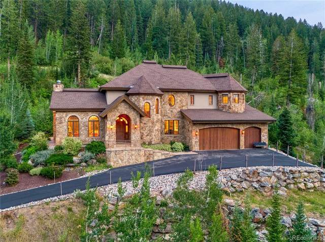 952 Steamboat Boulevard, Steamboat Springs, CO 80487 (#9528848) :: Own-Sweethome Team
