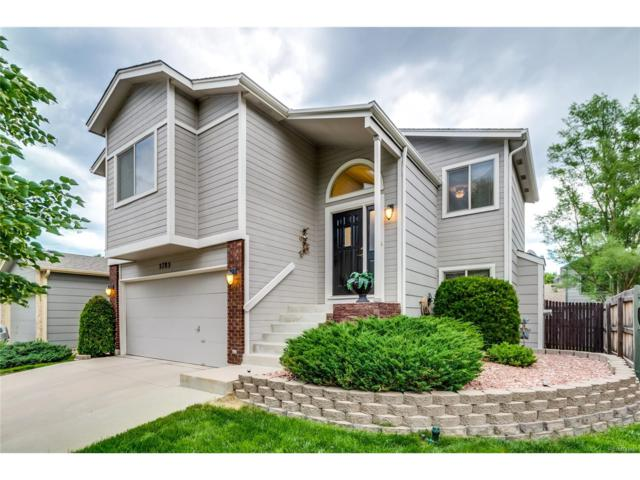 5785 Grapevine Drive, Colorado Springs, CO 80923 (#9531191) :: The Pete Cook Home Group