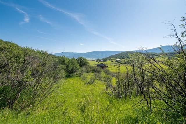 30370 Blacktail Lane, Oak Creek, CO 80467 (#9532595) :: The Peak Properties Group