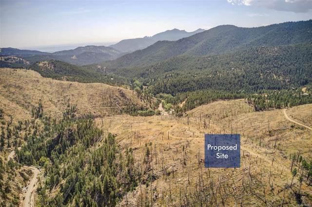 556 Wild Turkey Trail, Boulder, CO 80302 (MLS #9534613) :: 8z Real Estate