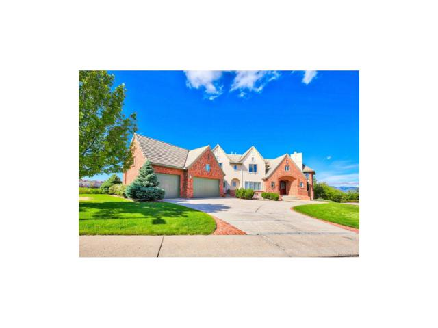 954 Rutherford Way, Highlands Ranch, CO 80126 (MLS #9535688) :: 8z Real Estate