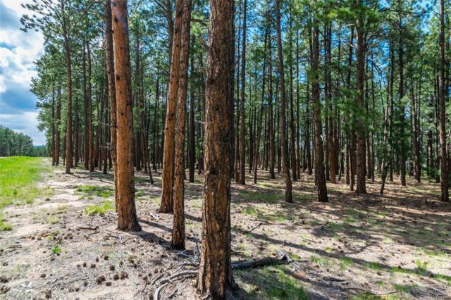 19045 Hilltop Pines Path, Monument, CO 80132 (#9537858) :: James Crocker Team