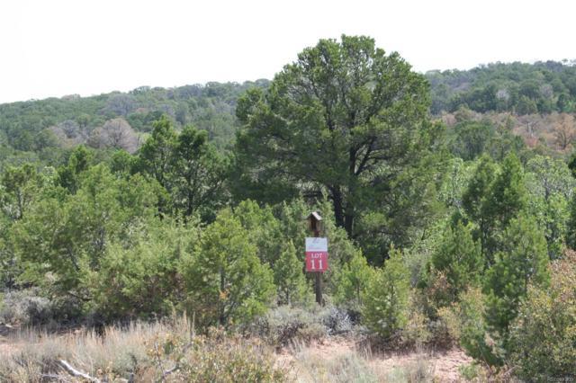 11 Elk Reserve Road, Glade Park, CO 81523 (#9544609) :: Bring Home Denver with Keller Williams Downtown Realty LLC