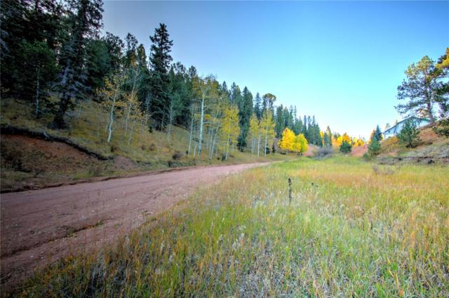 493 Willow Road, Divide, CO 80814 (MLS #9549832) :: 8z Real Estate