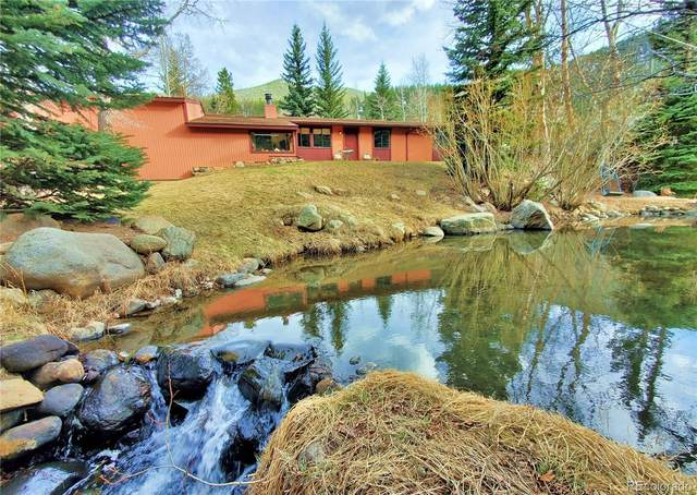 53 Silver Lakes Drive, Dumont, CO 80436 (#9555848) :: Re/Max Structure