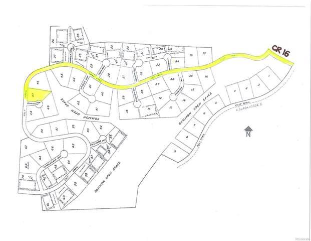 Lot 47 Black Horse II, Oak Creek, CO 80467 (#9555924) :: 5281 Exclusive Homes Realty