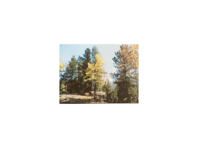 0 Lodgepole Lot 55 Drive, Evergreen, CO 80439 (MLS #9556832) :: 8z Real Estate