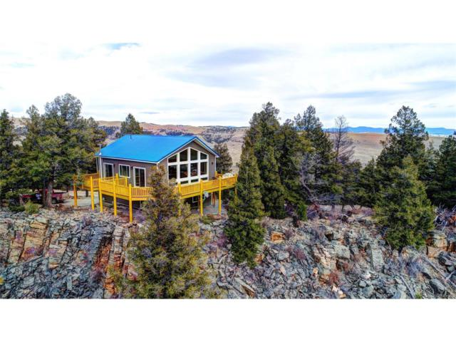 1479 Middle Fork Vista, Fairplay, CO 80440 (MLS #9558658) :: 8z Real Estate