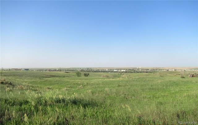 S County Road 213, Deer Trail, CO 80105 (MLS #9561669) :: 8z Real Estate