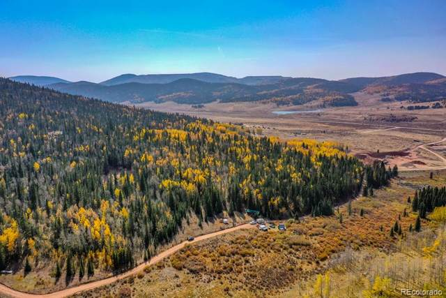 2644 County Road 81, Cripple Creek, CO 80813 (#9561930) :: James Crocker Team