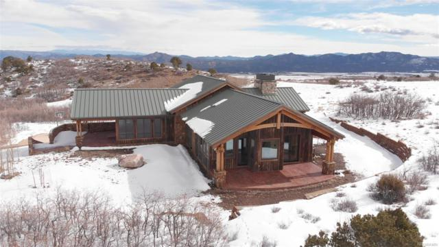 293 Conestoga Lane, Cotopaxi, CO 81223 (#9563765) :: Mile High Luxury Real Estate