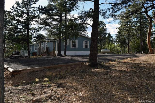 24 Spruce Creek Road, Divide, CO 80814 (#9564152) :: Chateaux Realty Group