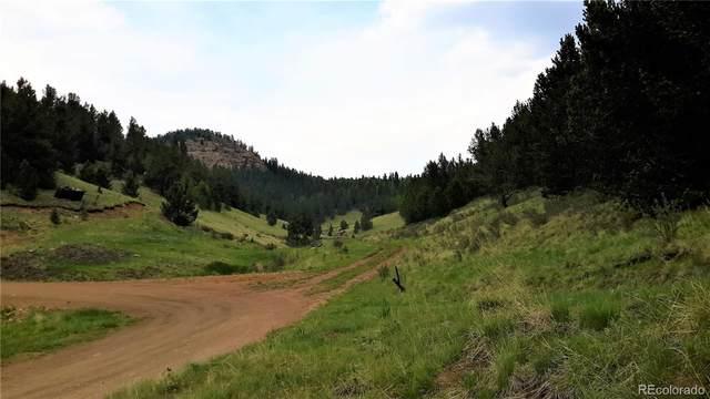 10701 S Highway 67, Cripple Creek, CO 80813 (#9564613) :: My Home Team