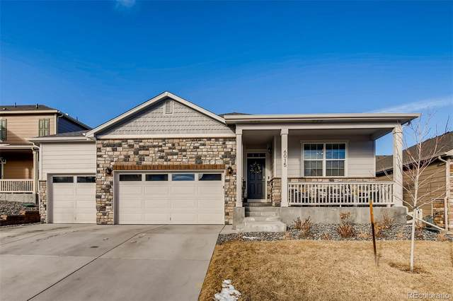6015 Point Rider Circle, Castle Rock, CO 80104 (#9568306) :: Berkshire Hathaway HomeServices Innovative Real Estate