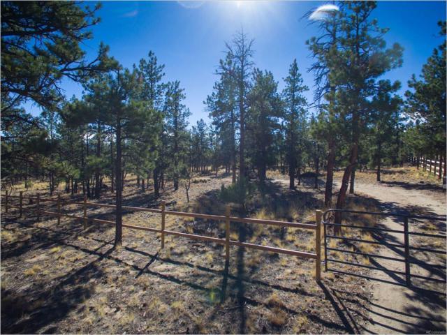 16245 County Road 327, Buena Vista, CO 81211 (MLS #9569110) :: 8z Real Estate