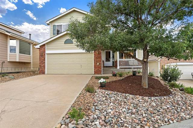 3160 Masters Point, Castle Rock, CO 80104 (#9569227) :: Chateaux Realty Group