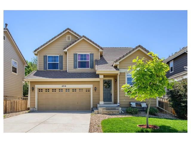 4214 Kestrel Place, Castle Rock, CO 80109 (#9569417) :: The Sold By Simmons Team