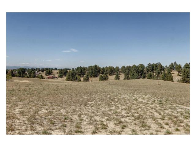 13291 Endless View Way, Parker, CO 80138 (#9569679) :: The Sold By Simmons Team