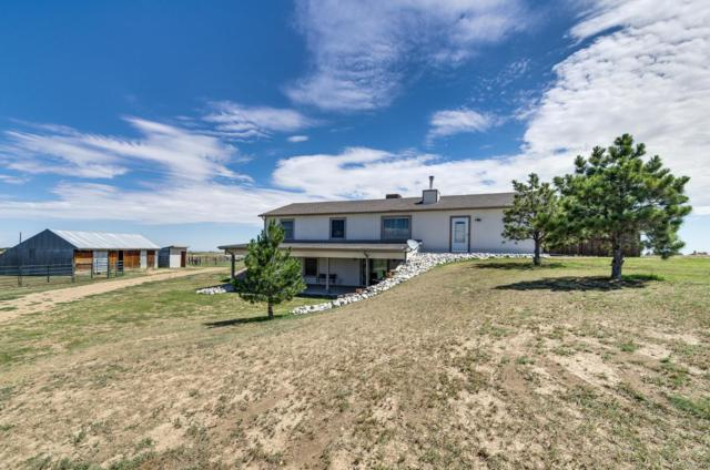 42812 Ricki Drive, Parker, CO 80138 (#9573347) :: The Tamborra Team
