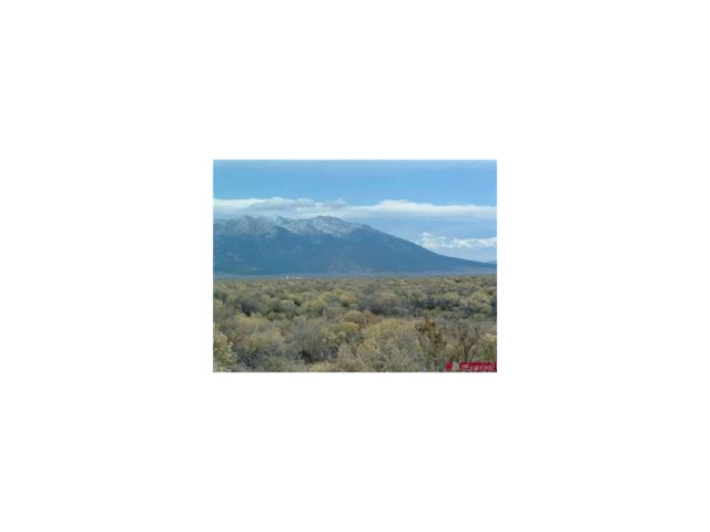 N County Rd 116, Alamosa, CO 81101 (MLS #9575625) :: 8z Real Estate