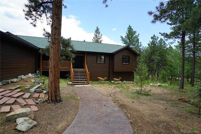 43 Two Bits Street, Bailey, CO 80421 (MLS #9577670) :: Clare Day with Keller Williams Advantage Realty LLC