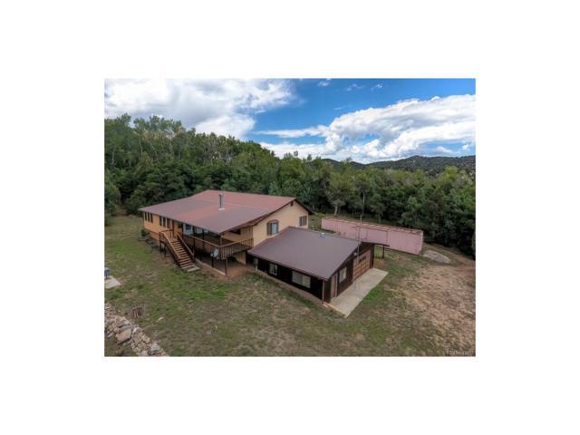 1379 Hamilton Creek Road, Coaldale, CO 81222 (MLS #9577688) :: 8z Real Estate