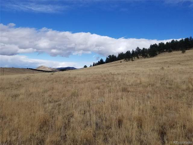 101 County Road 358, Westcliffe, CO 81252 (#9584705) :: The DeGrood Team