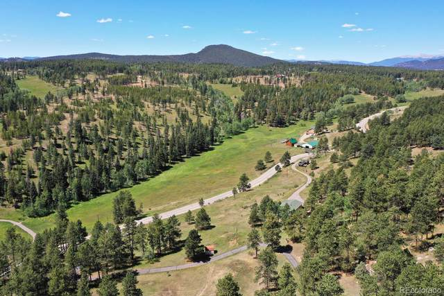 21432 Pleasant Park Road, Conifer, CO 80433 (MLS #9587099) :: Kittle Real Estate