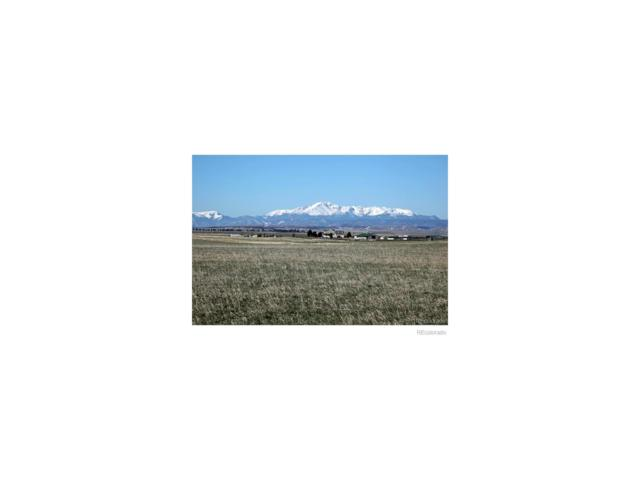 Doubletree Ranch Court, Franktown, CO 80116 (#9587239) :: The Galo Garrido Group