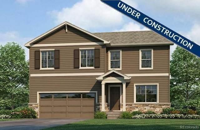 6401 B Street Road, Greeley, CO 80634 (#9589208) :: Wisdom Real Estate