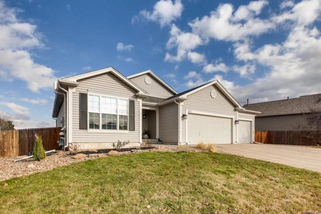 11244 Gallahadion Court, Parker, CO 80138 (#9590614) :: Sellstate Realty Pros