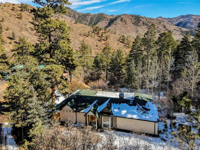 10204 Mountain Road, Cascade, CO 80809 (#9590631) :: The Heyl Group at Keller Williams