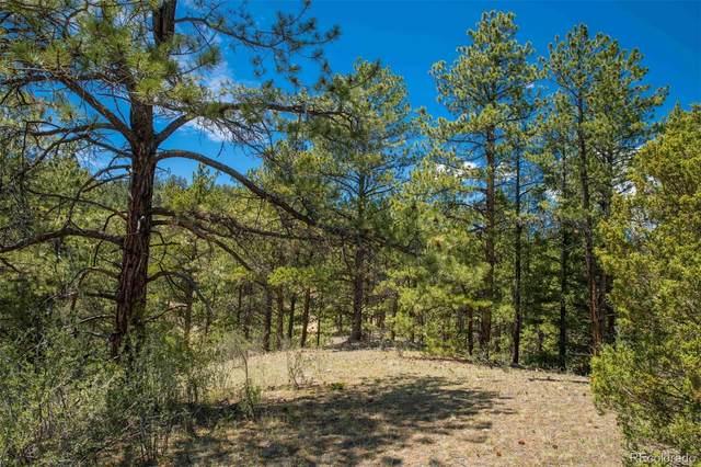 14433 Lot 1, 2, 3 S. Elk Creek Road, Pine, CO 80470 (#9593211) :: The Colorado Foothills Team | Berkshire Hathaway Elevated Living Real Estate
