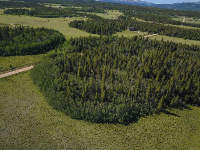 Wild Rye Road, Fairplay, CO 80440 (#9598908) :: The DeGrood Team